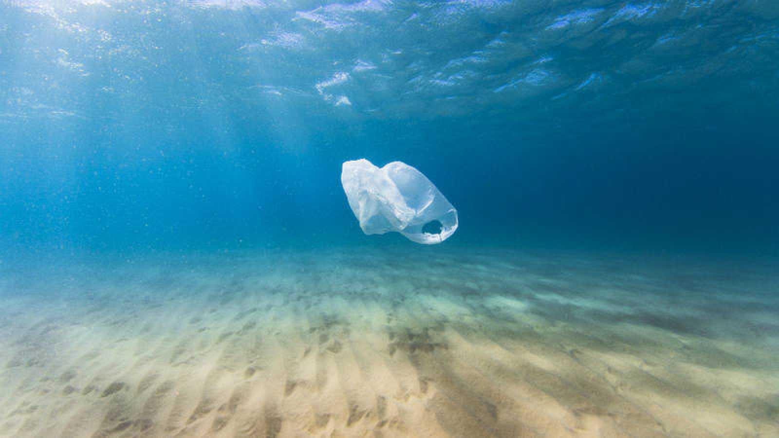 Susty se compromete con la lucha del plástico de un solo uso